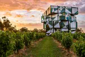 Top wine experiences in South Australia