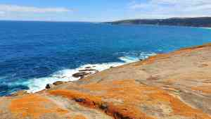 Bunnik's Favourite Coastal Experiences!