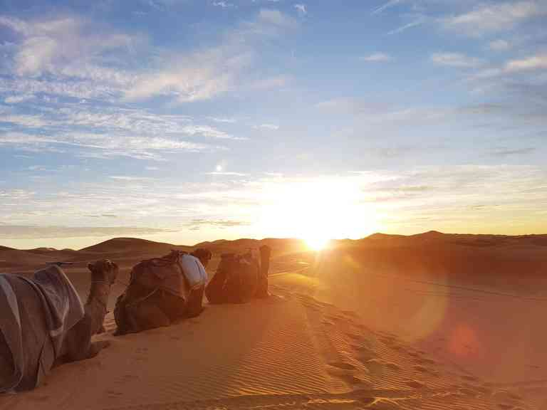 Sahara sunrise, Morocco