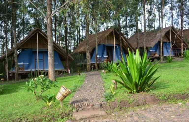 Eco-Omo Safari Lodge image
