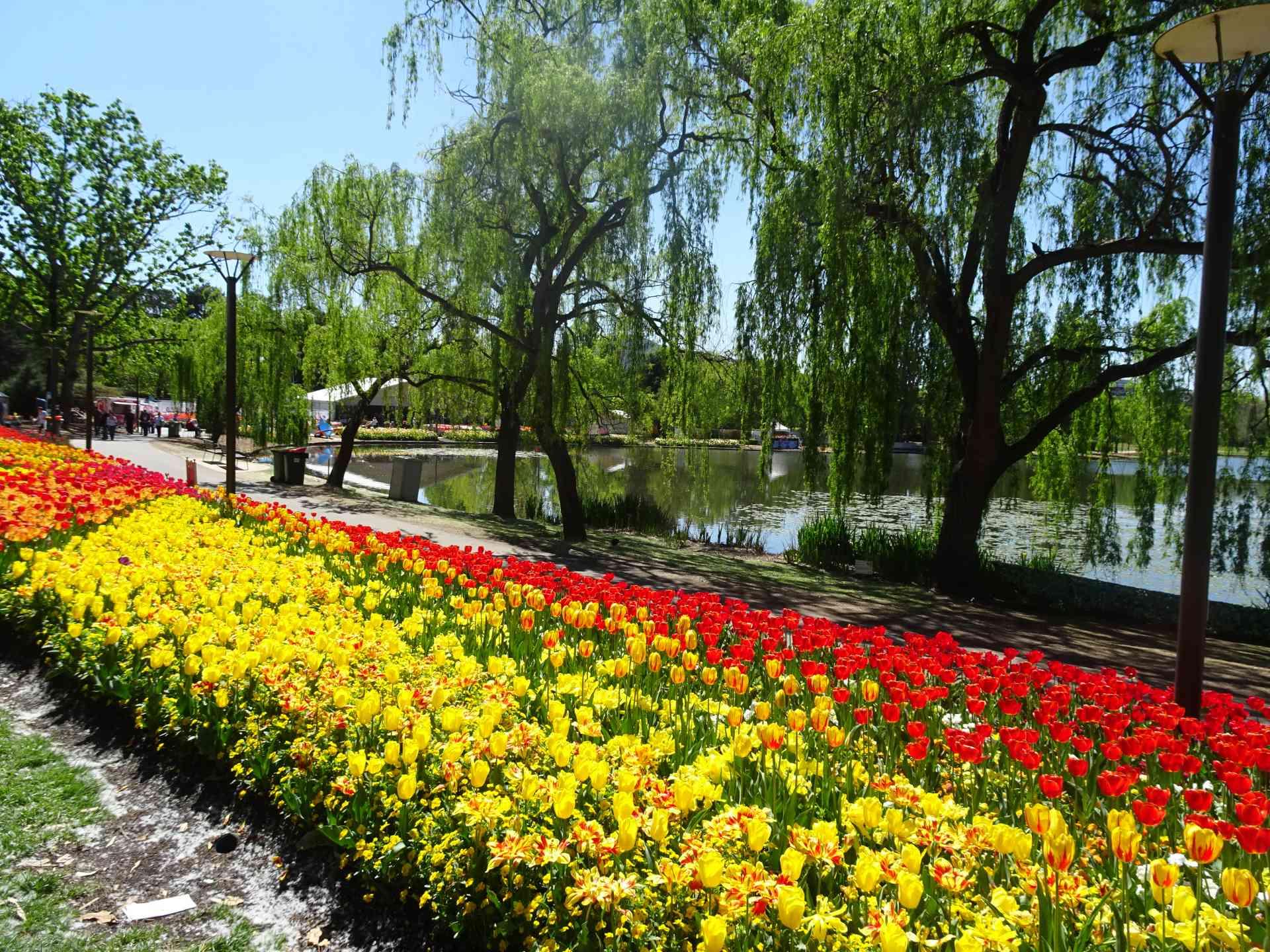 The Floriade Flower Festival Departures