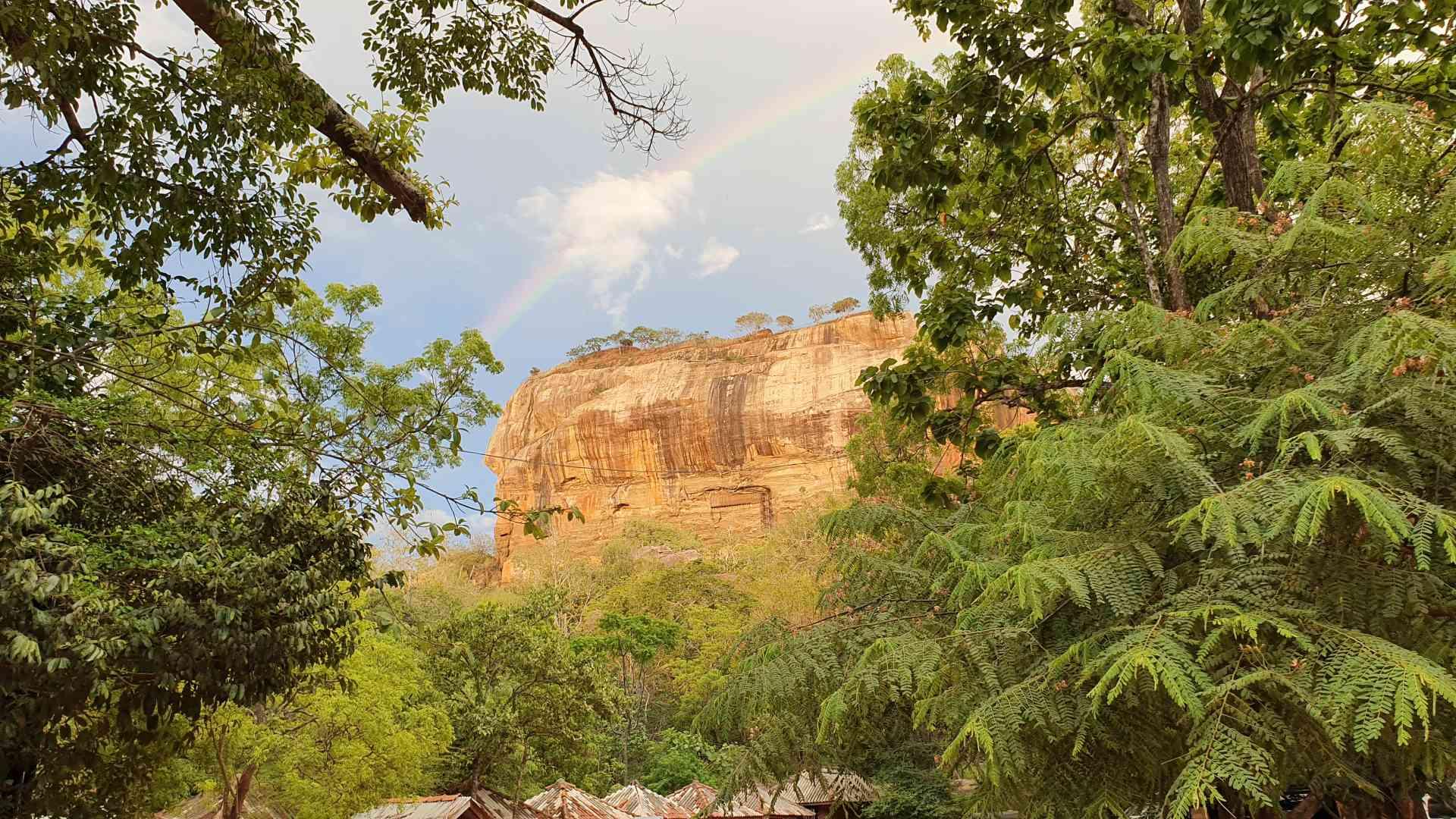 Ancient Ruins Amongst Lush Jungle Foliage
