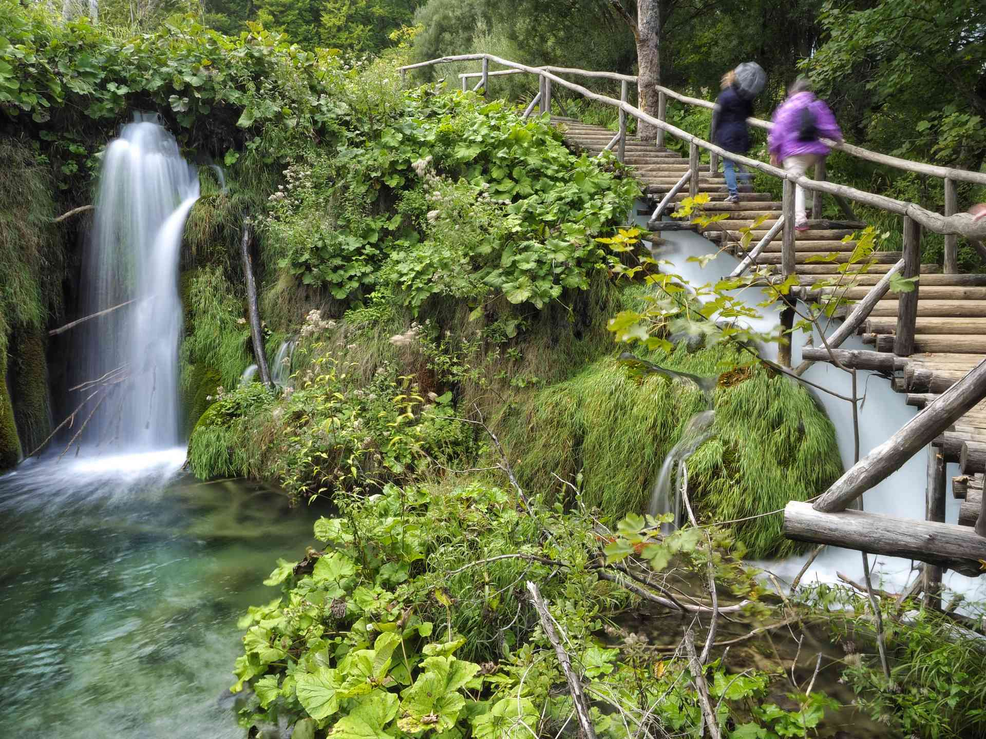 Serene Plitvice Lakes & the Istrian Peninsula